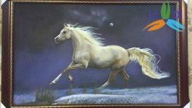tranh ngựa 017