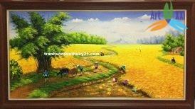 tranh phong cảnh đồng quê 031